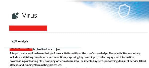 Trojan Virus Breakdown